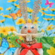 Bunny easter — Stock Photo