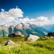 Mountain panorama from fiescheralp — Stock Photo