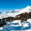 Winter panorama above Grindelwald — Stock Photo