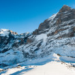 ������, ������: Panorama of Wetterhorn