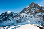 Panorama of Wetterhorn — Stock Photo