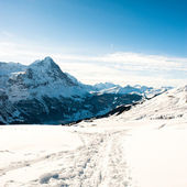 Panoramic scenery above Grindelwald, — Stock Photo