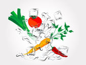 Vegetables in splash — Stock Vector