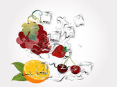 Fruits in splash — Stock Vector
