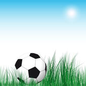 Soccer Ball background. Soccer ball in the green grass. — Stock Vector