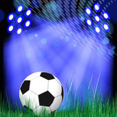 Soccer Ball background. Soccer ball in the green grass. — Stock Vector