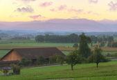 Farmland at sunrise, Switzerland — Stock Photo