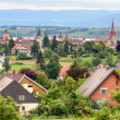 Murten old town and castle, Switzerland — Stock Photo #10626960