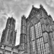 St. Martin's Cathedral cathedral of Utrecht, Netherlands — Stock Photo