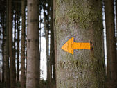 Yellow arrow giving directions, concept — Stock Photo