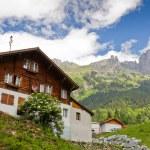 Chalet de montagne en été — Photo