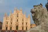 Duomo estátua e catedral de leão, itália — Foto Stock
