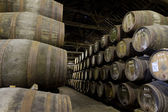 Wooden barrels hold Port fortified — Stock Photo