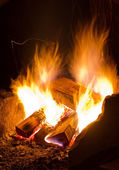 Burning campfire — Stock Photo