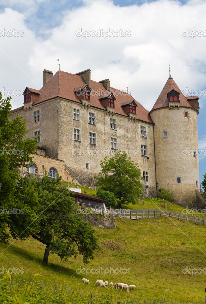 Замки в швейцарии аренда