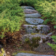 Stone pathway, granite rock stairway path in summer garden — Stock Photo