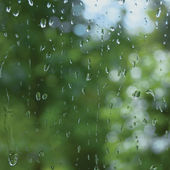 Rainy summer day, raindrops on window glass, macro closeup — Stock Photo