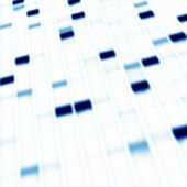 DNA gel electrophoresis — 图库照片