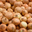 Tilt-shifted onions — Stock Photo