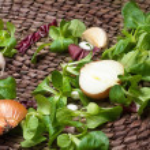 Garlic ,onion and fresh herbs — Stock Photo