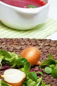 Onion and fresh herbs — Stock Photo