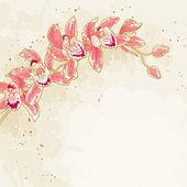 Ramo di orchidee su sfondo tonica — Vettoriale Stock