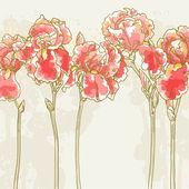 Background with red iris flowers — 图库矢量图片