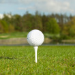 Golf ball on the irish course — Stock Photo