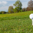 Golf ball on Irish idyllic course — Stock Photo