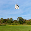 Golf flag — Stock Photo