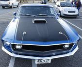 Mustang — Stock Photo