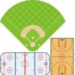 Sports Fields 2 — Stock Vector