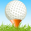 Golf ball on the grass — Stock Vector