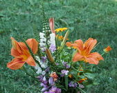 Bouquet of colorful flowers — Foto de Stock