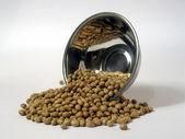Soya bean roasted — Stock Photo