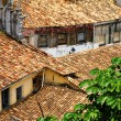 Rooftops in Salvador de Bahia - Stockfoto