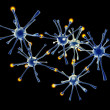 Stock Photo: Neuronal Network