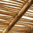 Bamboo roof — Stock Photo