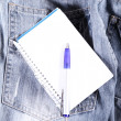 Notes on Jeans - Foto de Stock  