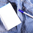 Notes on Jeans — Stock Photo #8826743