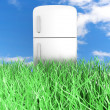 Ecologic Refrigerator — Stock Photo