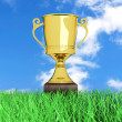 Trophy in the Grass — Stock Photo