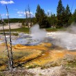 Stockfoto: Minute Geyser