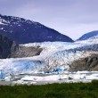 Mendenhall Glacier — Stock Photo #8520301