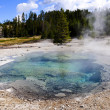 Crater Spring, Yellowstone National Park — Stock Photo