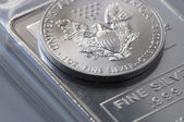Silver Coin Bullion — Stock Photo