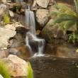 Japanese Zen Garden Stream - Stock Photo