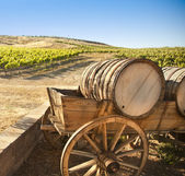 Grape Vineyard with Old Barrel Carriage Wagon — Stock Photo