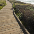 Wooden Walkway Along Ocean Coast - Stock Photo