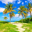 Varadero beach in Cuba — Stock Photo #8479638